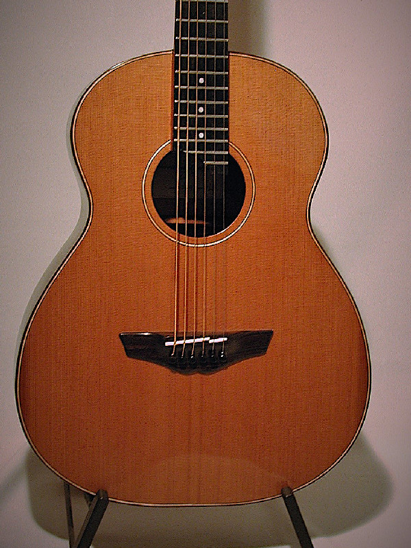 Acoustic Barit Steelstring Guitar