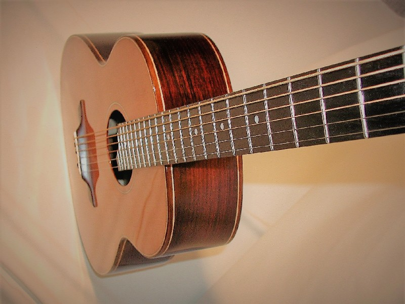 Acoustic Baritone steelstring